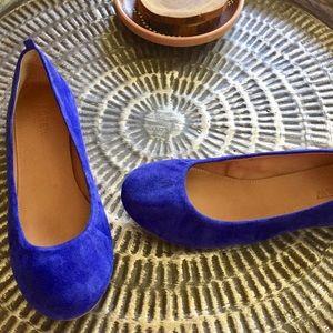 J crew ballet flats jewel tone blue suede Sz 6